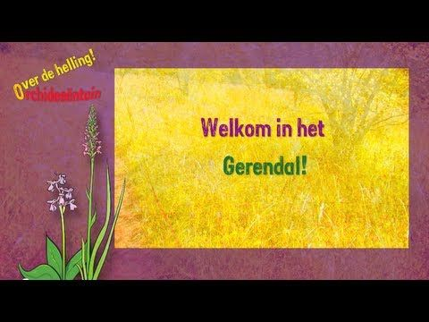 Orchidmovie about Orchideeëntuin Gerendal NL Language: Dutch, made in 2012