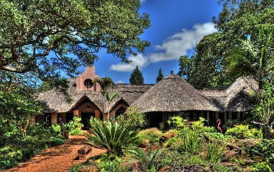 Amanzi lodge Harare Zimbabwe !! https://flightstoafrica15.wordpress.com/2015/08/08/tour-groups-in-harare-zimbabwe/