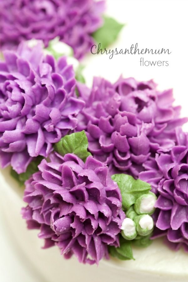 masam manis: Chrysanthemum Flowers