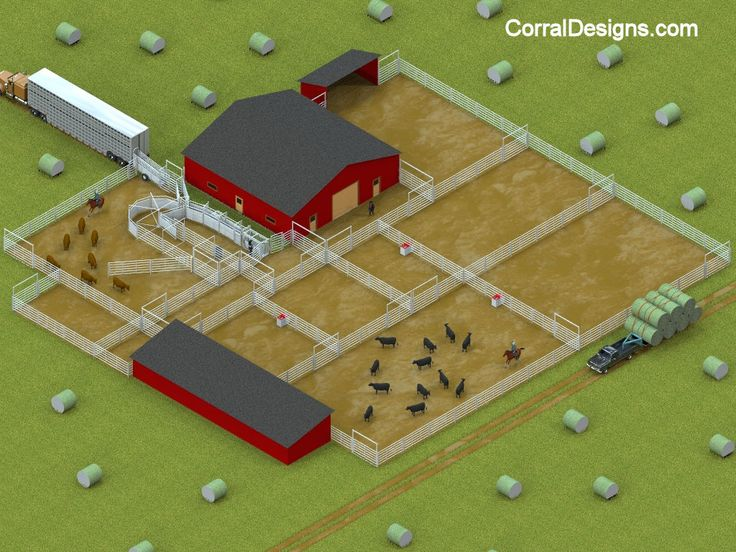 www.corraldesigns.com examples CattleSystems Cattle%20System%2010111.jpg