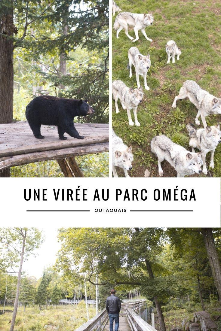 Parc Oméga + dodo en Wi-tente = on décroche en Outaouais! - Moi, mes souliers…