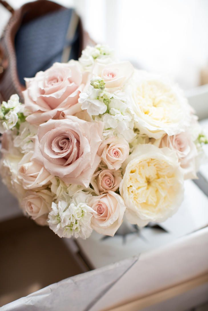 Ivory and Blush Rose Bridal Bouquet | Imageclairity Photo and Cinema | Belli Fiori | http://knot.ly/6497B0gTW | http://knot.ly/6494B0gT4 | http://knot.ly/6496B0gTA
