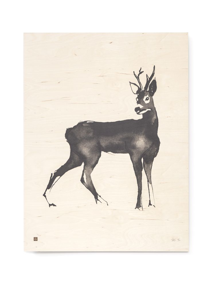 Roe Deer Fine Art Print on Wood Teemu Järvi Illustrations http://www.teemujarvi.com/en/shop/wood-prints/83-roe-deer.html Photo: Unto Rautio