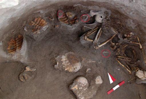 Les Découvertes Archéologiques: Les assyriens enterraient leurs morts avec des tortues