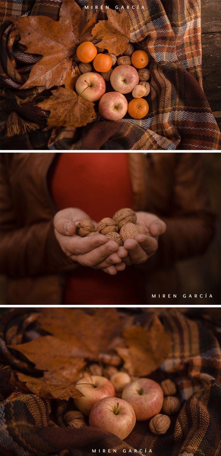 Otoño.  Fotografías de Miren García, fotógrafa de Santurtzi (Vizcaya)