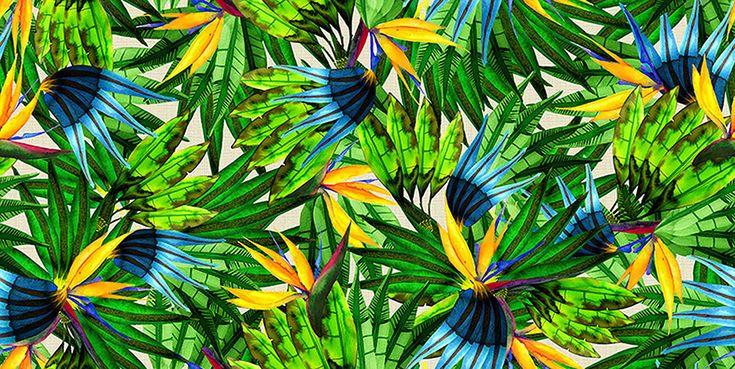 Olimpíadas do Rio vem chegando e o Comitê Olímpico do Brasil (COB) definiu a estilista responsável pelos uniformes que o time brasileiro vai vestir no desfile da Cerimônia de Abertura e Encerramento dos jogos em agosto. A escolhida é Lenny Niemeyer, conhecida por sua moda praia chiquérrima – e a produção vai ser da C&A.