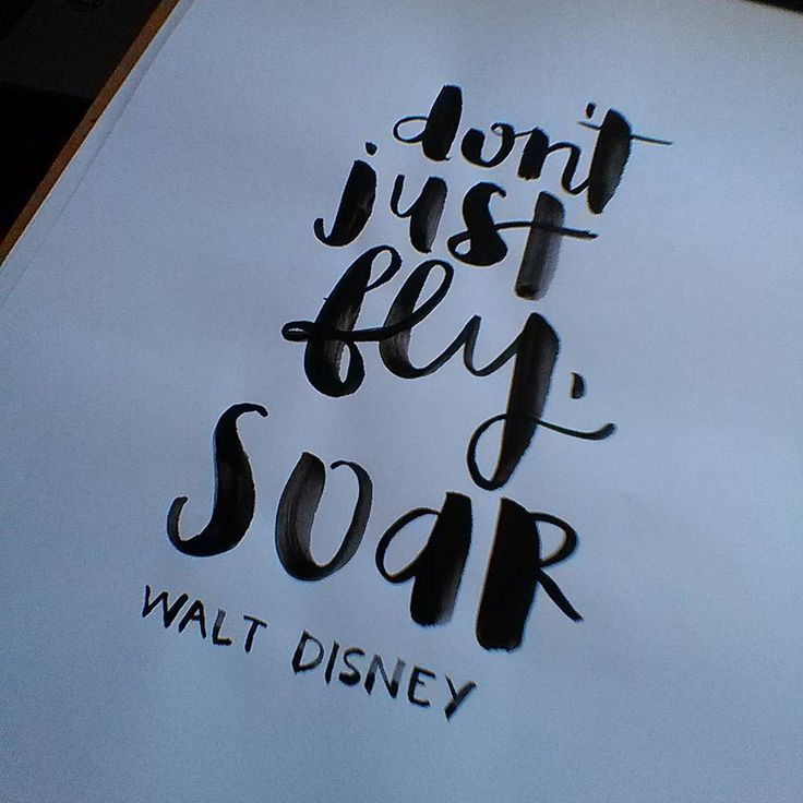 Don't just fly, soar. -Walt Disney | brush lettering | hand lettering | inspiration | motivation | chrystalizabeth