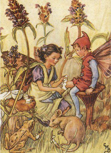 ♥ Mary Cicely Barker's Self heal Fairy