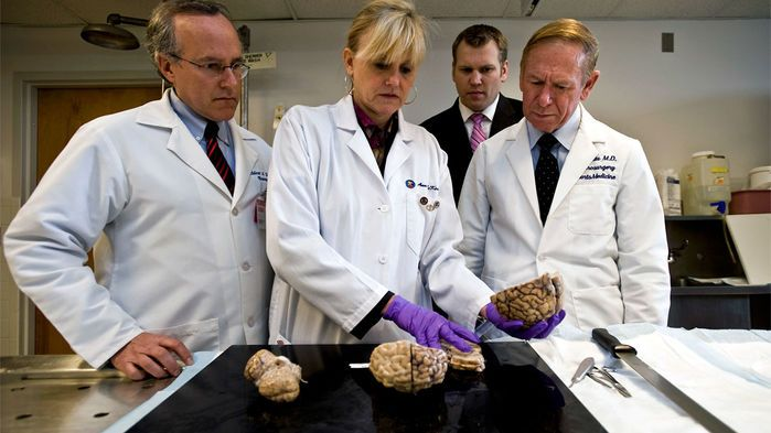 A pair of Boston University (BU) brain researchers is pushing back against demands by the National Hockey League (NHL) that they release data, brain pathology slides, and interview records of former NHL players and their families. The scientists accumulated the records during their research on chronic traumatic encephalopathy (CTE), a neurodegenerative disease that has been linked to repetitive head trauma.