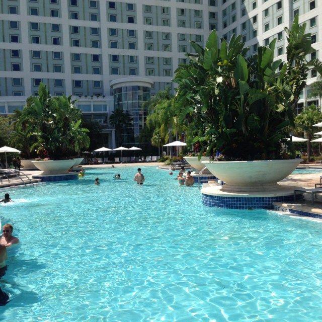 Pool Area at the Hilton Orlando Hotel, Florida, USA