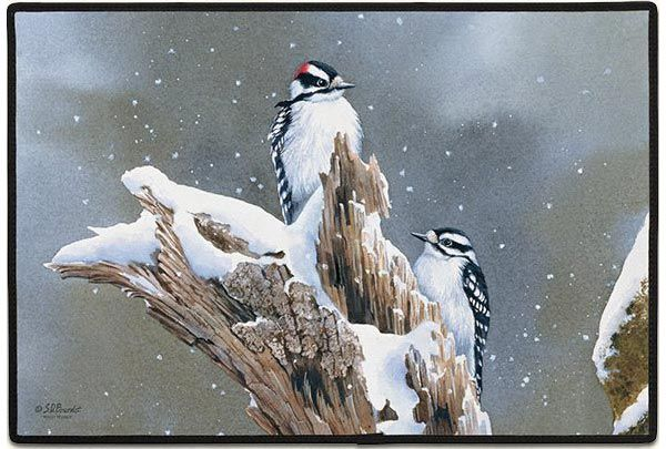 The snow is falling as this pair of Downy Woodpeckers perch in the perfect position for your visitor to view them as they walk up to your entrance way. This winter doormat will bring a smile to anyone who steps up to your doorway during the cold winter season. These indoor outdoor doormats are made with a 100% Polyester face, permanently dye printed and fade resistant, nonskid rubber backing. Free Shipping!