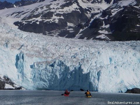 Glacier calving amazing seward alaska places i 39 ve for Anchorage alaska fishing