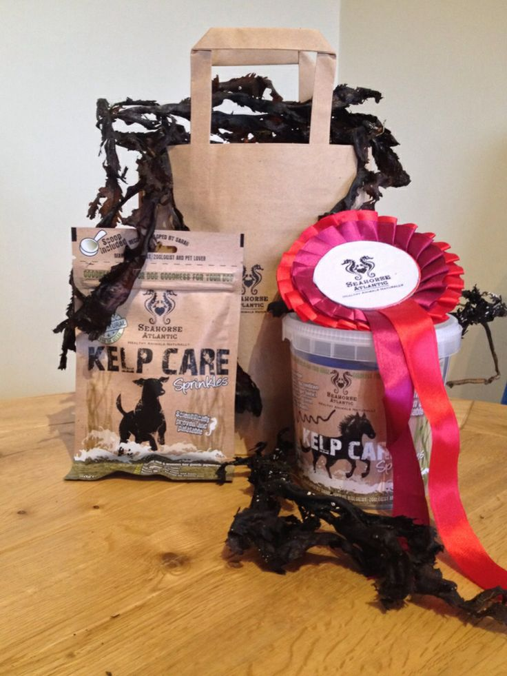 Kelp Care goodie pack giveaways coming soon #horses #cats #dogs