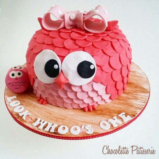 Owl themed party -  cake and macarons