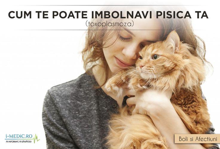 Toxoplasmoza este o boala produsa un un parazit, al carui gazda este, in principal, pisica. Ea, la randul ei, se infesteaza cu oualele parazitului consumand carne care provine de la animalele cu toxoplasmoza sau prin ingerarea de oua direct din natura. http://www.i-medic.ro/blog/pentru-iubitorii-de-animale-cum-te-poate-imbolnavi-pisica-ta-toxoplasmoza