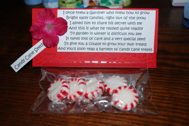 Candy canes canes and seeds on pinterest for Candy cane crafts for adults