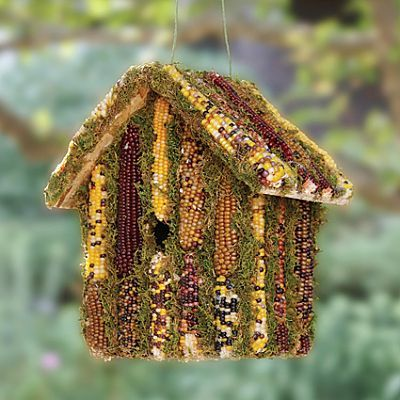 """Edible bird house~~gives a new meaning to the saying """"eating me out of house and home""""...LOL!"""