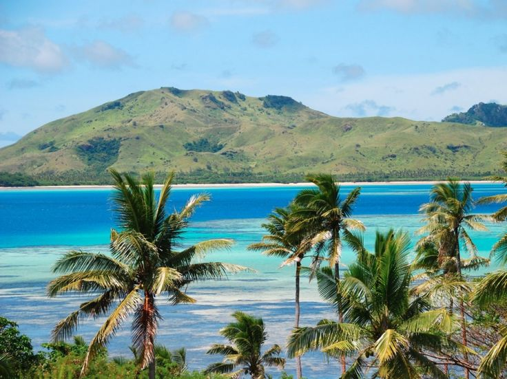 Palm trees sway on the tropical island of Fiji.