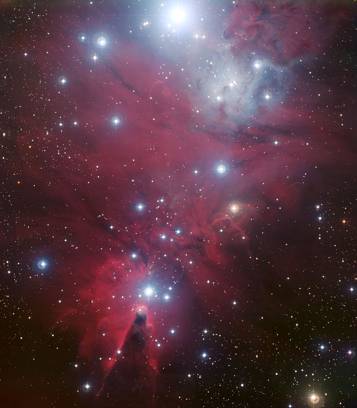 The brilliant stars of NGC 2264 are known as the Christmas Tree star cluster. The triangular tree shape is traced by the stars with its base at the Cone Nebula