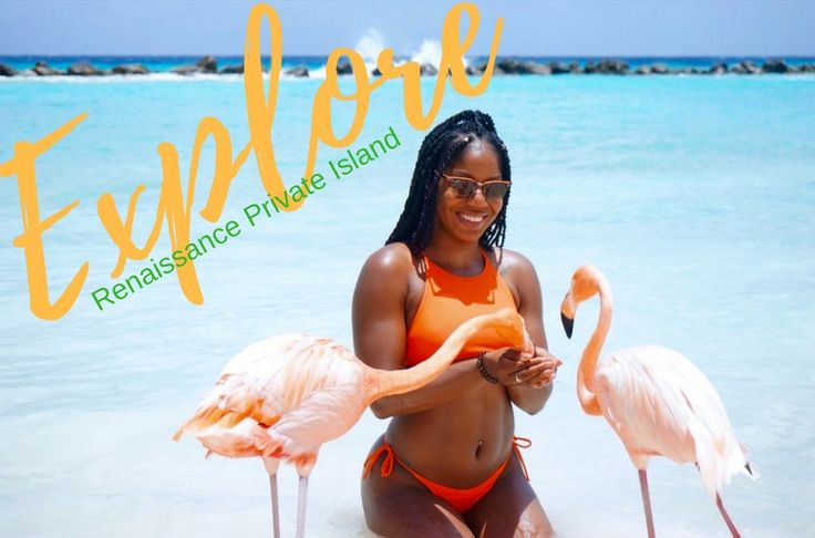 Feed the Flamingos at Renaissance Private Island. Read more via link and visit Aruba today! #aruba #oranjestad