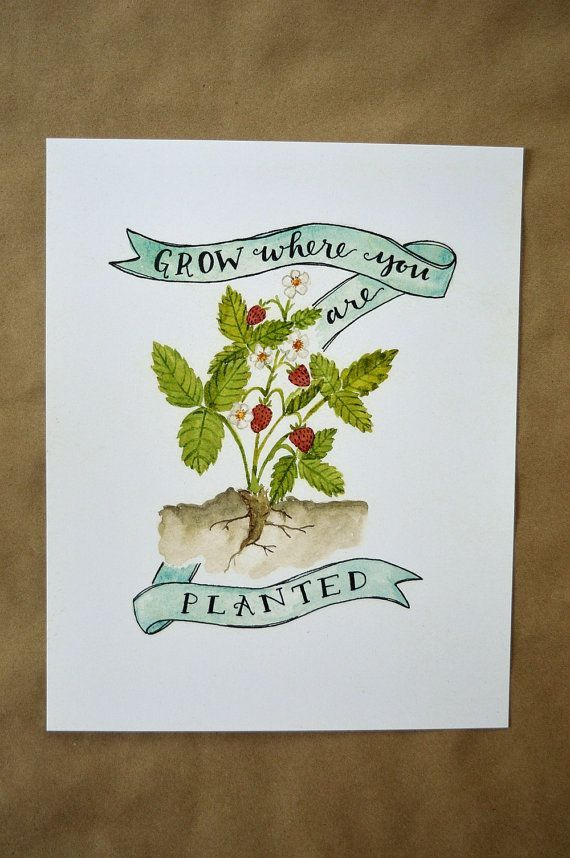 Grow where you are planted - watercolor garden art - the perfect gift for a gardener. #gardenlovergift #christmasgifts #gifts #presents #gardener #watercolor