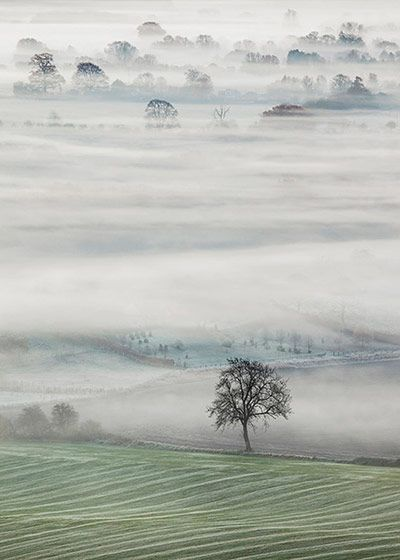 Credit: John Hoddinott Vale of mist, Clench, Vale of Pewsey, Wiltshire, by John Hoddinott, highly commended in the Classic View category