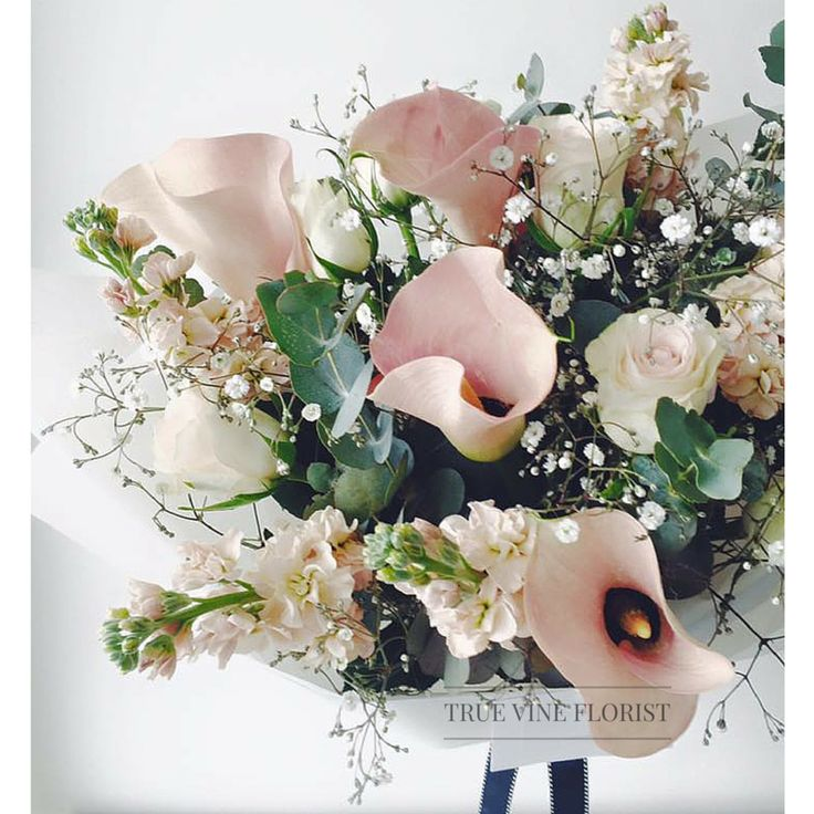 True Vine Florist- Florist Based in Sydney Inner West. Order yours today. #sydneyflorist #sydneyflowers #bouquet #flowers #floral #flowerarrangement #sydney #flower #rose #present #truevineflorist #flowergift #flowerdelivery #stockflower #weddingbouquet #pinkflowers #pinkandpurple #hydrangea #callalily #pinkcallalily #callalilybouquet #floraldesign #stylishbouquet #prettybouquet #flowerbouquet #bunchofflowers #rose #babysbreath #sydneyflowerdelivery #bunchofflowers #flowerpresent