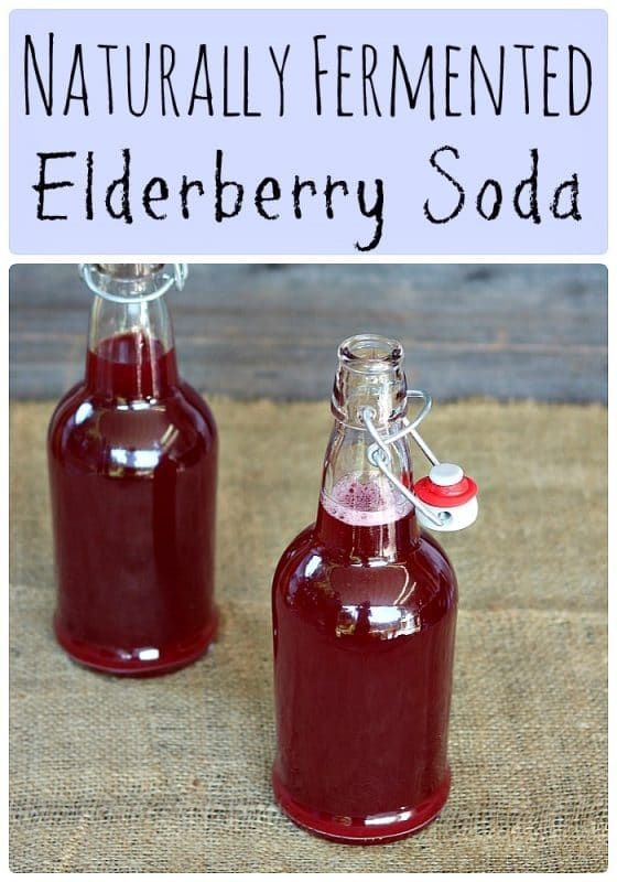 Fermented Elderberry Soda with Ginger and Honey (Made with Wild Yeast)