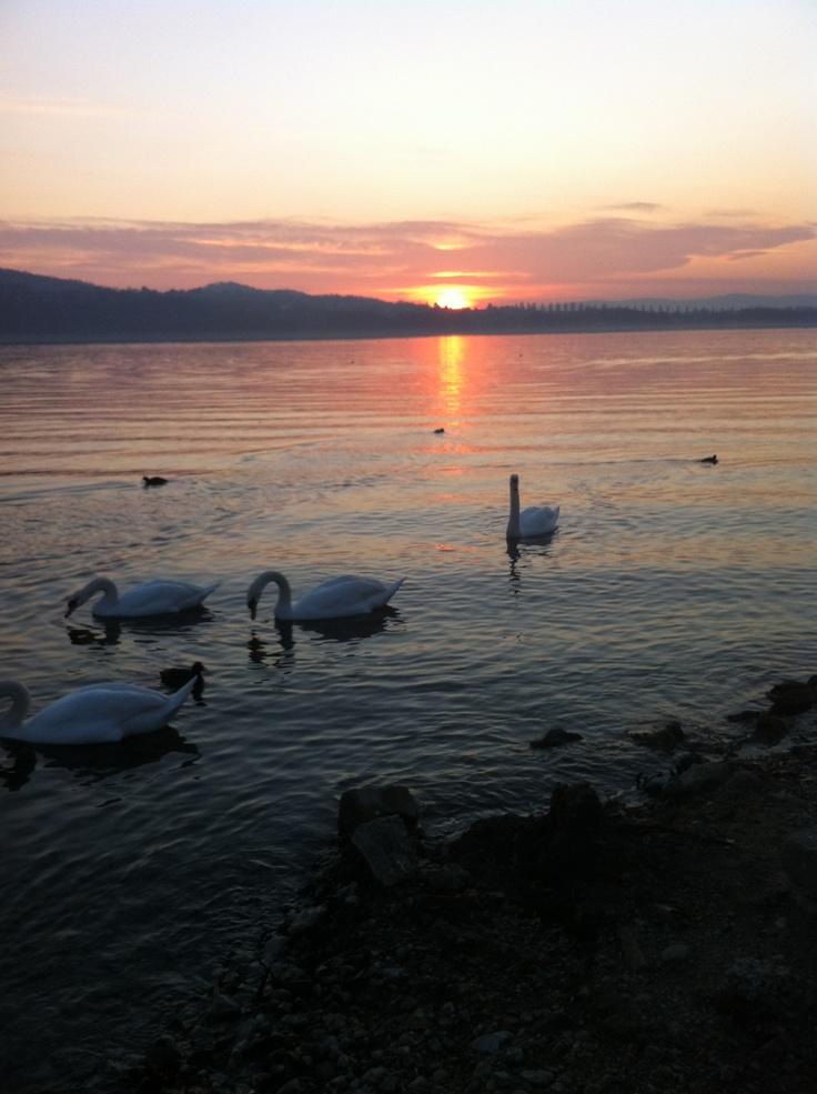 Lago di Varese (Italy)