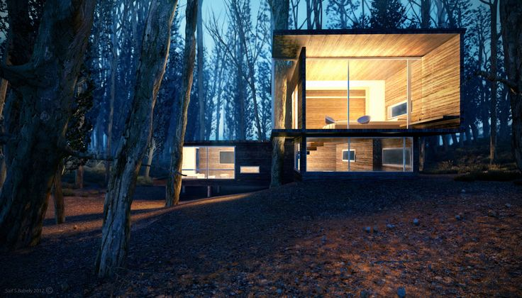 CGarchitect - Professional 3D Architectural Visualization User Community | ForestHouse_Night