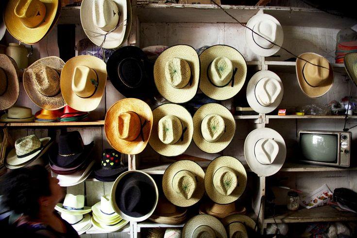 Hats, Nicolas Malleville