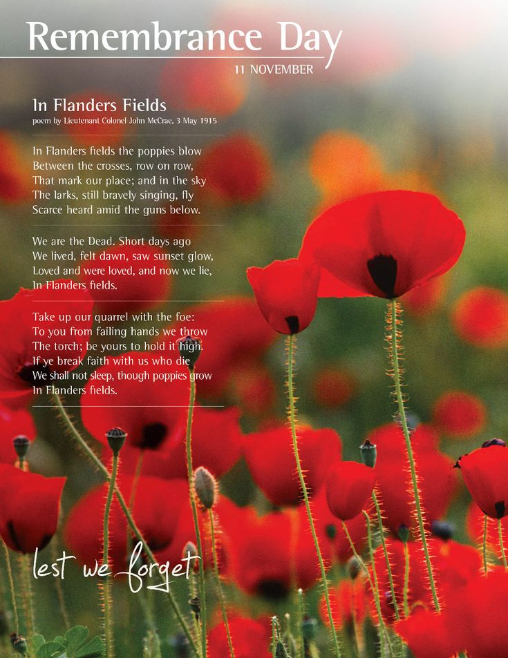Remembrance Day - In Flanders Fields - a war poem, written during the First World War by Canadian physician, Lieutenant Colonel John McCrae. He was inspired to write it on May 3, 1915, after presiding over the funeral of friend and fellow soldier Alexis Helmer, who died in the Second Battle of Ypres