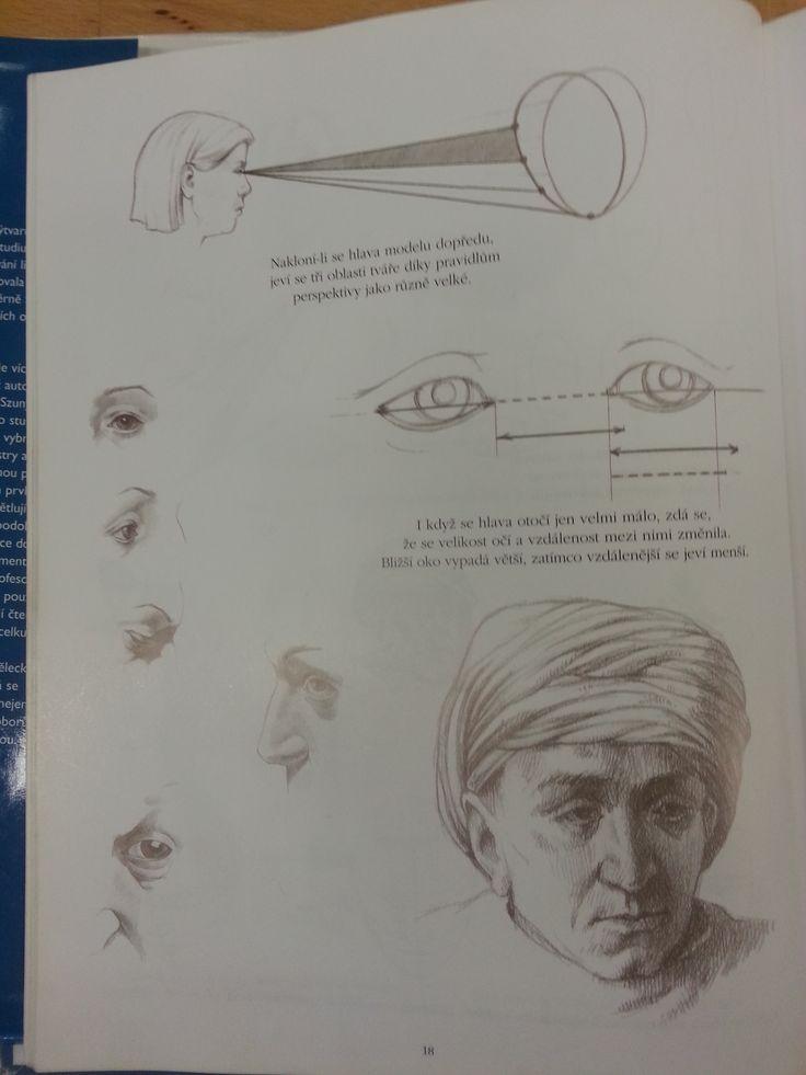 umiestnenie očí