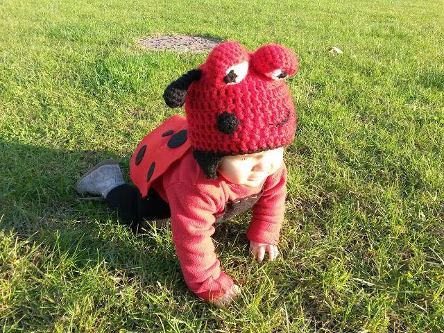 Disfarce de Joaninha DIY Ladybird costume DIY