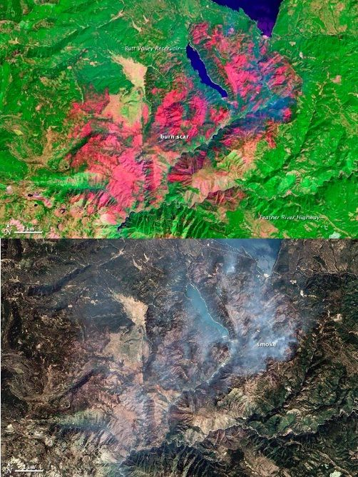 Image Analysis: Using fire damage in remote sensing images to