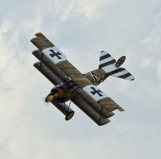 Fokker Dr1_