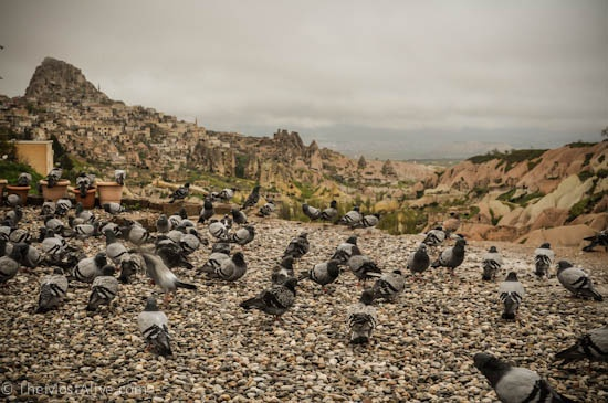 THE CAPPADOCIA SERIES: PIGEON VALLEY AND UCHISAR CASTLE.Visit @ http://themostalive.com/pigeon-valley-uchisar-castle-cappadocia-turkey/