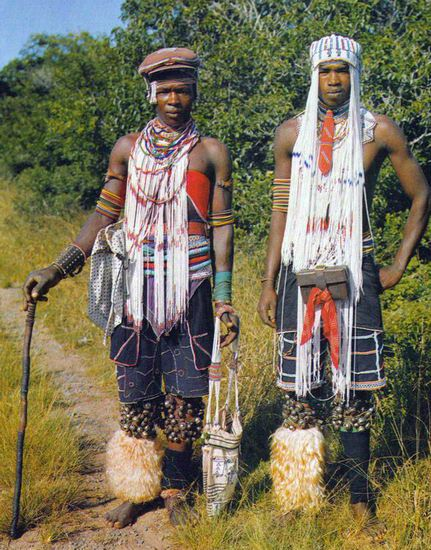 Descriptive Essay: My Country South Africa