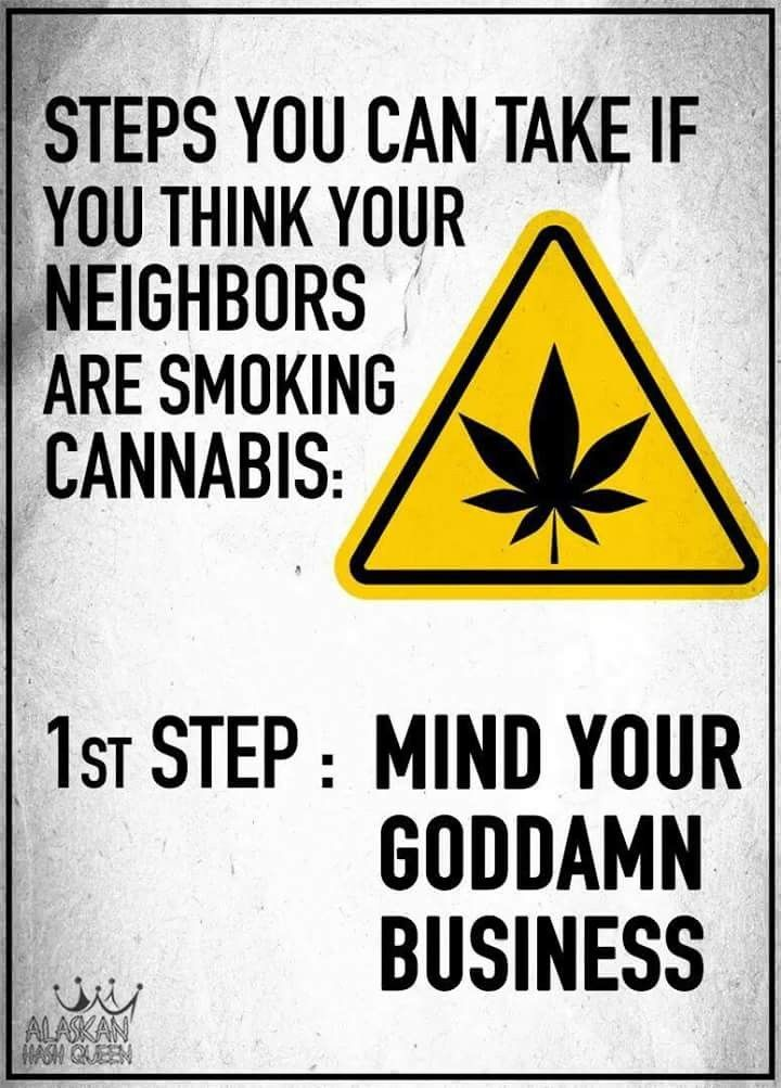 Pin by Georgia Marshall on Weed | Pinterest | Cannabis, Weed and Buy weed