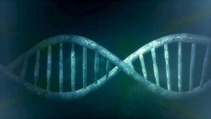 """Desafío a la evolución: Hallan 145 genes """"ajenos"""" en el organismo humano http://es.rt.com/3ml3"""