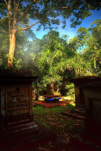 Bogor Botanic Garden - Bogor, Java, Indonesia