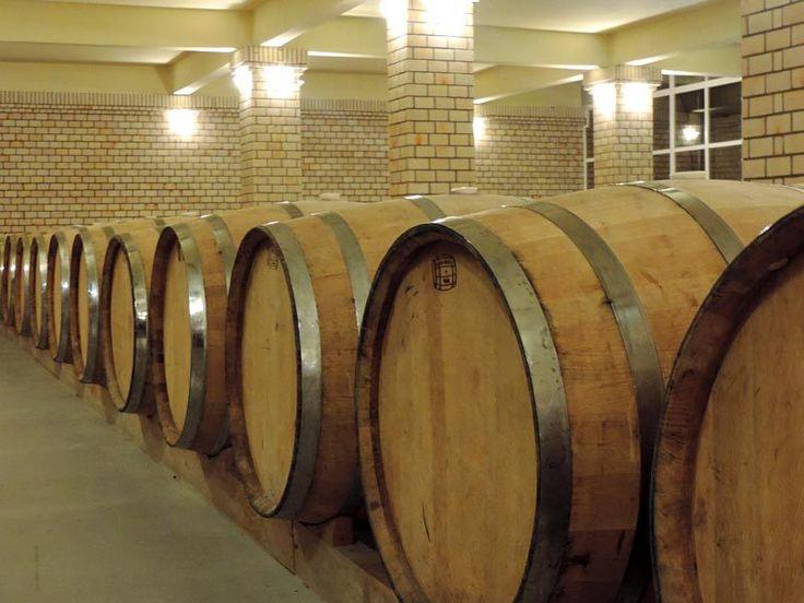 Vinícolas de Bento Gonçalves - Vinícola Miolo (Foto: Esse Mundo É Nosso)