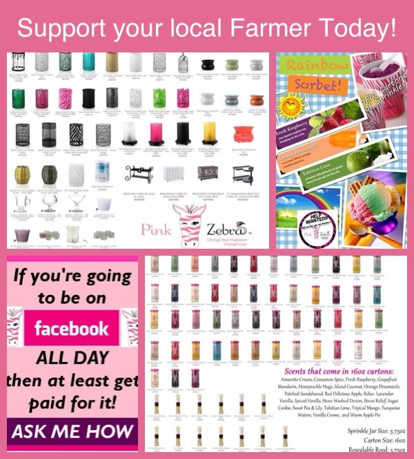 Just a little of what your missing out on if you haven't tried Pink Zebra Home and their New and Innovative home fragrance products. Get yours today at www.SprinkleLady.com