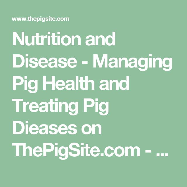 Nutrition and Disease - Managing Pig Health and Treating Pig Dieases on ThePigSite.com - The Pig Site