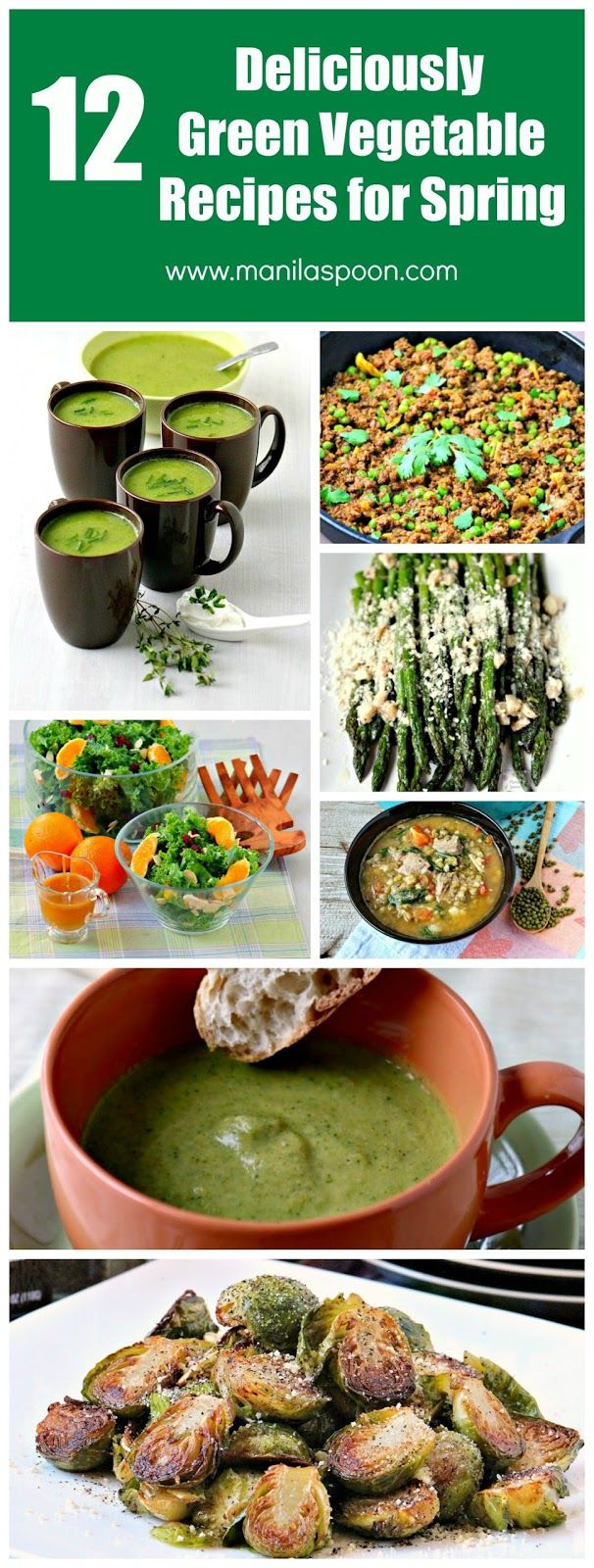 Best 25 green vegetables list ideas on pinterest for Best green vegetable recipes