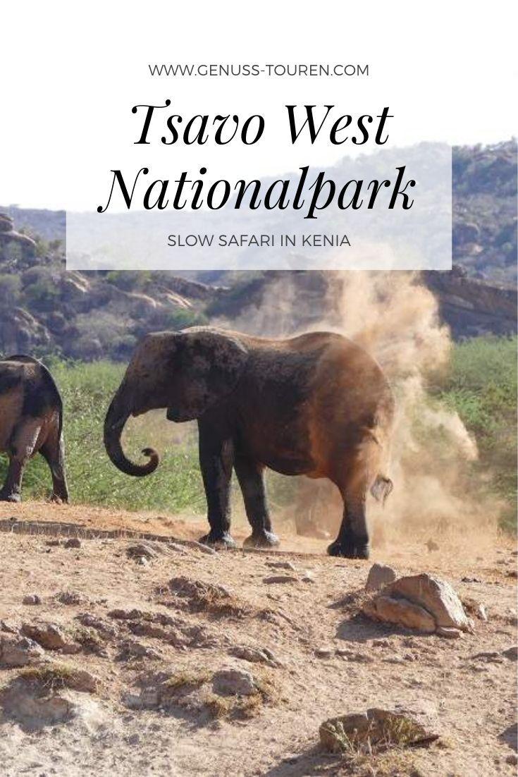 Slow Safari Im Tsavo West Im Suden Kenias Genuss Touren Kenia Kenia Reisen Kenia Urlaub