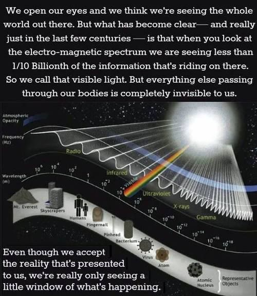 "The next time you think ""seeing is believing"", keep in mind that our eyes can only perceive 1/10 billionth of the total information that rides on the electromagnetic spectrum... It is time to collectively tune the Noosphere to the resonant frequencies of the universe... ~ Nassim Haramein"