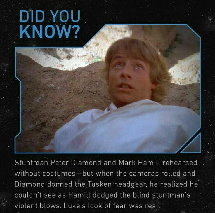 Kinda funny actually  // Star Wars Facts