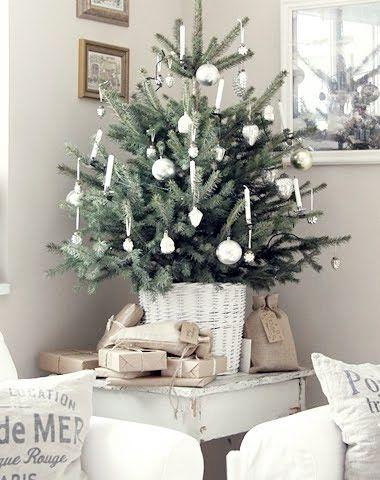 Adventsinspiration – minigran till advent - Sköna hem