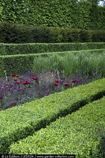 Layered hedges - Luciano Giubbilei at Chelsea